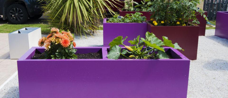 jardinière-rectangulaire-violette
