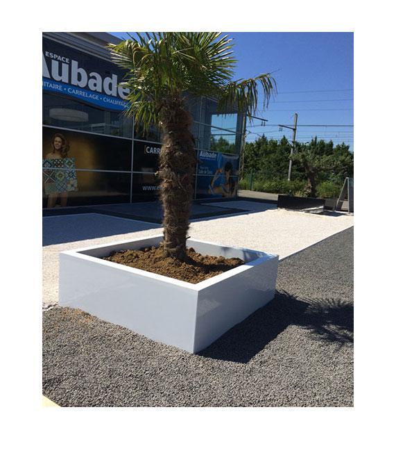 jardiniere cubique blanc pour palmier
